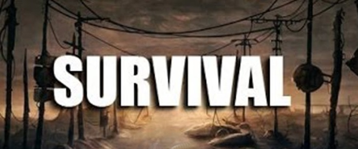 Чит на Survival [OK / VK / Steam]